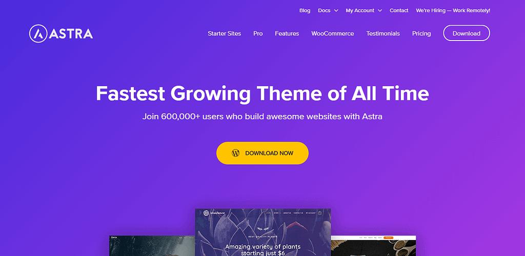 Astra Theme - Free WordPress themes in 2020